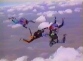 parachutist lands in bushes