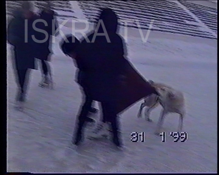 dog pulling girl's coat at ice rink