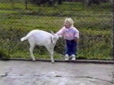 Baby playing with a goat