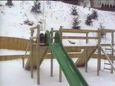 Dogs on a slide